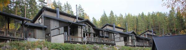 Hillside Villa Ainotar